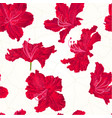 seamless texture rhododendron red flower vector image