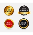 Best Choice Label Set vector image vector image
