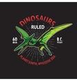 Dinosaur t-shirt print vector image
