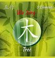 five feng shui elements set vector image