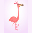 cool carton pink flamingo bird vector image