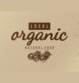 local organic natural food background vector image