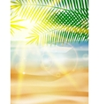 Beautiful seaside view on sunny day with sand vector image vector image