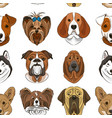 Different dogs breed vector image