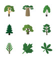 flat icon natural set of jungle park baobab and vector image