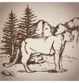 hand drawing leopard landscape vintage vector image