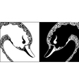 Ornamental swan black and white heads vector image
