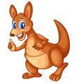 kangaroo vector image