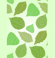 seamless texture with transparent green leaves vector image