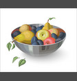 Bowl with fruits isolated on white vector image