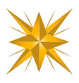 isolated star shape vector image
