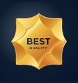 gold medal award sheriffs star vector image