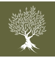 Olive tree silhouette icon isolated vector image