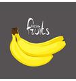 bunch of tasty bananas vector image vector image