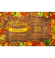 Fall Festival template vector image