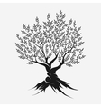 Olive tree silhouette icon vector image
