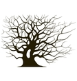 Silhouette branching of an old tree vector image