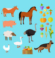 domestic animals set near fruit and vegetable vector image vector image