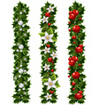 Green Christmas garlands of holly and mistletoe vector image