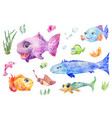 fish set watercolor vector image