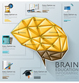 Brain Shape Three Dimension Polygon Education vector image