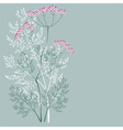 flowering meadow plant vector image