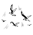 flying seagulls hand drawn vector image