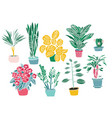 indoor plants and flowers hand drawing set vector image