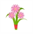 Pink Orangery Camomile Flower Bouquet Tied With vector image