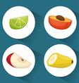 Fruits digital design vector image
