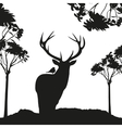 vecrot black deer in the woods stencil vector image