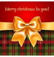 Merry christmas - background vector image vector image