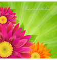 Border With Colorful Gerbers vector image