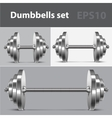 Dumbbells set vector image vector image