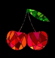 Abstract red cherry vector image