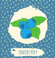 Blueberry hand drawn sketched fruit with leaf on vector image
