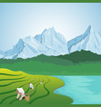 people working in the lush fields of terraced farm vector image