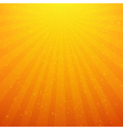 Sunburst Background With Rays vector image vector image