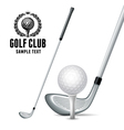 Golf Equipments vector image