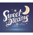 wish good night on dark blue sky backgrou vector image