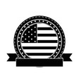 usa country flag icon vector image