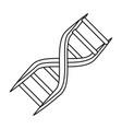 dna human symbol vector image
