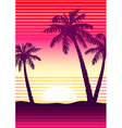 Palms at sunset vector image