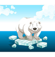 Polar bear standing on iceberg vector image