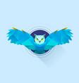 hypnotic owl vector image
