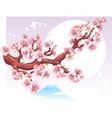 flowering branch of sakura in the sun vector image vector image