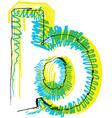 Sketch font Letter b vector image