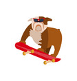 small dog on skateboard vector image