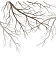 Tree Branches vector image