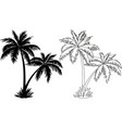 Palm Trees Silhouettes and Contours vector image